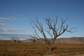 Drought is becoming an issue of increasing concern