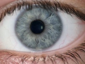 Iris recognition is one of many biometric identifiers used