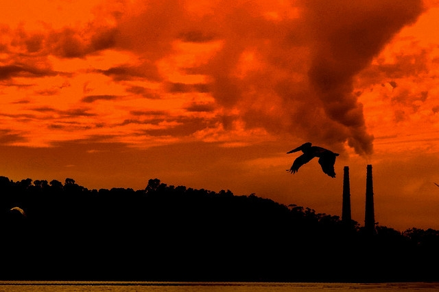 Smoke Stacks Sunset (image by Dawn Ellner, Flickr, CC)